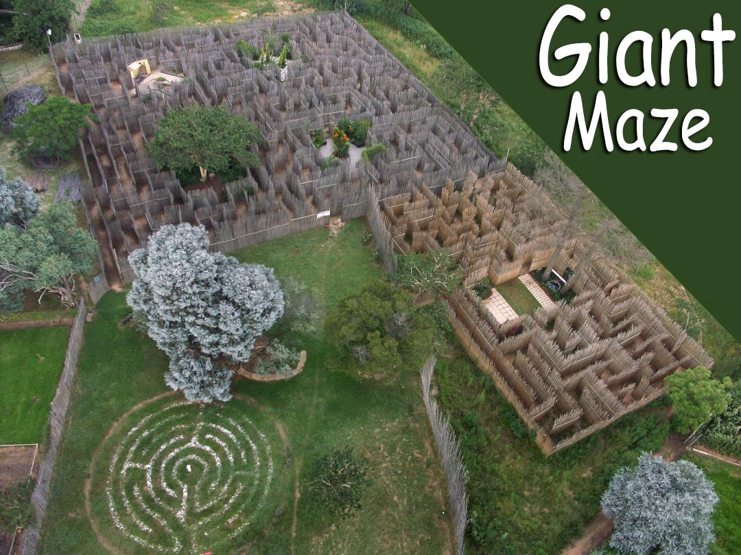 Honeydew Giant Maze