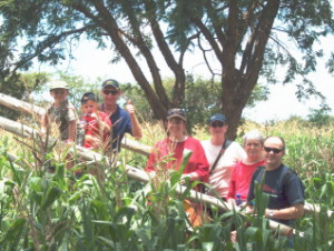 Family on bridge in maize maze